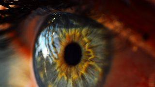 わたしの視力は13,000です(本当)。この世の端はどこまで見える?完全版視力ランキング
