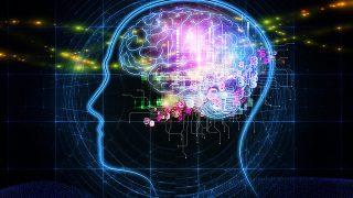 血液型占いはもう古い!?人工知能が人間の性格を解析するシステムが完成!